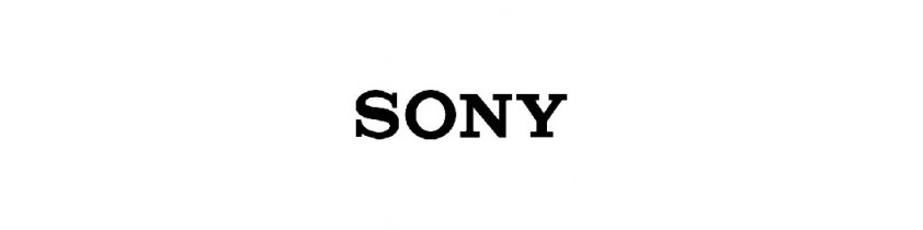 Batterie Externe Ordinateur Sony