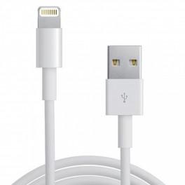 Câble USB iPhone 5 iPhone 6 Long Haute Qualité